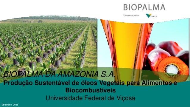 BIOPALMA DA AMAZONIA S.A. Produção Sustentável de óleos Vegetais para Alimentos e Biocombustíveis Universidade Federal de ...