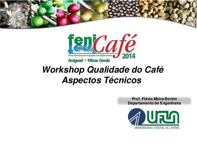 Prof. Flávio Meira Borém Departamento de Engenharia Workshop Qualidade do Café Aspectos Técnicos