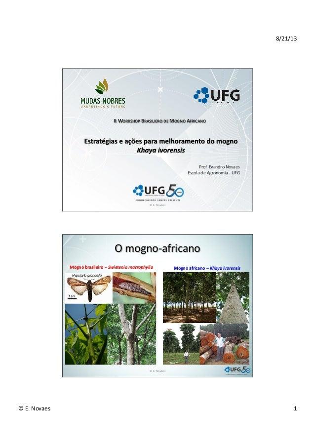 8/21/13   ©  E.  Novaes     1   Prof.  Evandro  Novaes   Escola  de  Agronomia  -‐  UFG   II...