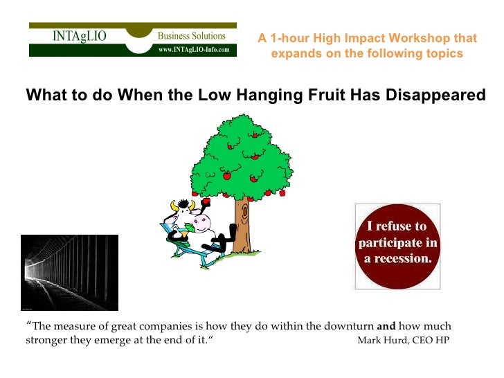 """A 1-hour High Impact Workshop that expands on the following topics What to do When the Low Hanging Fruit Has Disappeared """"..."""