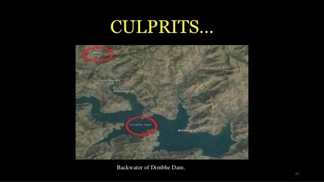 CULPRITS… Backwater of Dimbhe Dam. 11