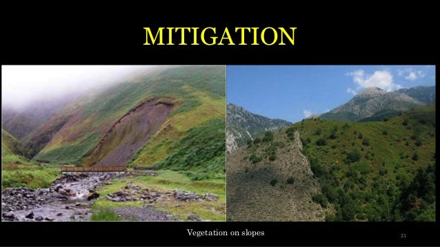 MITIGATION Vegetation on slopes 21