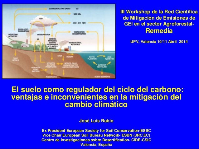 III Workshop de la Red Científica de Mitigación de Emisiones de GEI en el sector Agroforestal- Remedia UPV, Valencia 10/11...