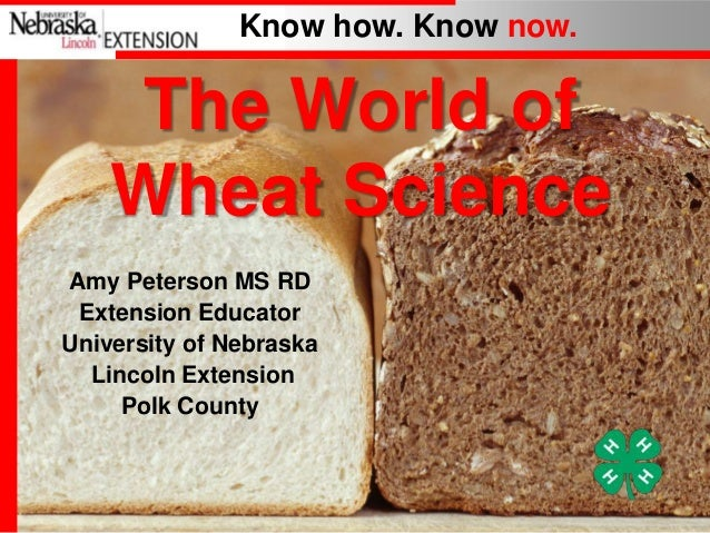 Know how. Know now.  The World of Wheat Science Amy Peterson MS RD Extension Educator University of Nebraska Lincoln Exten...