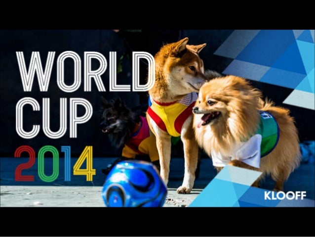 World Cup 2014   Dog Soccer Fans