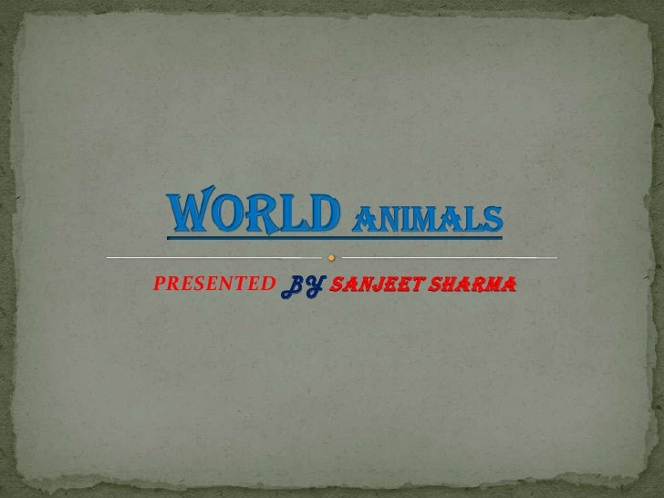 PRESENTED BYSANJEET SHARMA<br />WorldAnimals<br />