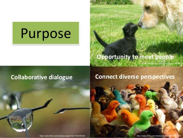 Purpose                                                              Opportunity to meet people                           ...