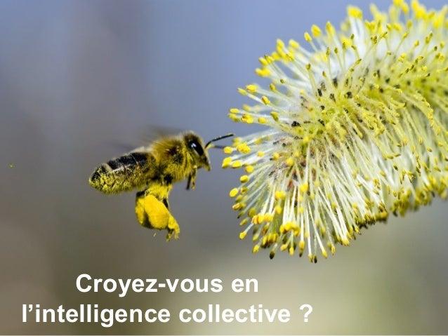 Croyez-vous enl'intelligence collective ?