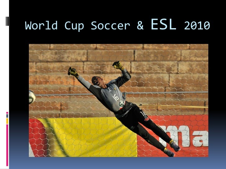 Essay about the 2010 soccer world cup