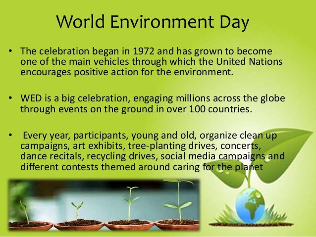 world environment day wed Celebrations of world environment day, 2018 opening remarks by director, ifgtb aerial view of the wed gathering ifgtbians in the wed.