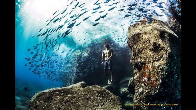 World Nature Photography Awards: Winners Slide 3