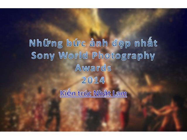 Sony World photography awards 2014