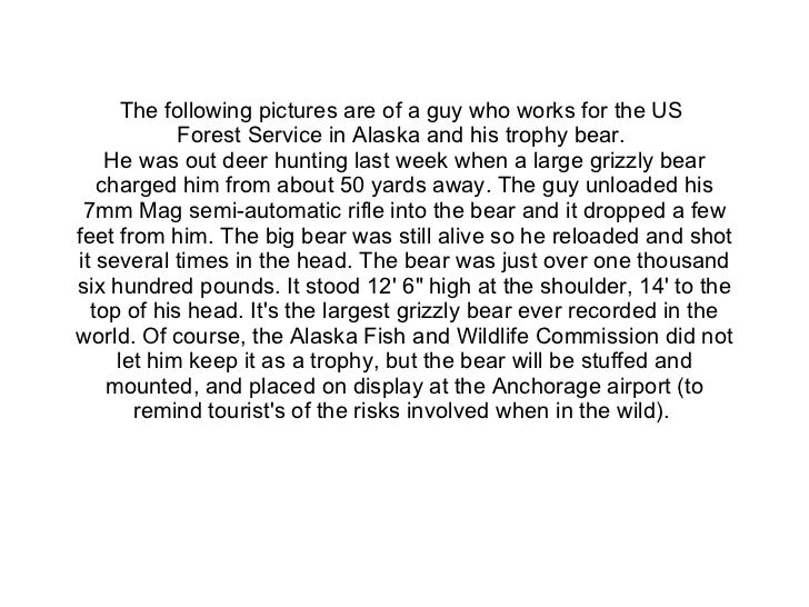 The following pictures are of a guy who works for the US  Forest Service in Alaska and his trophy bear.  He was out deer h...