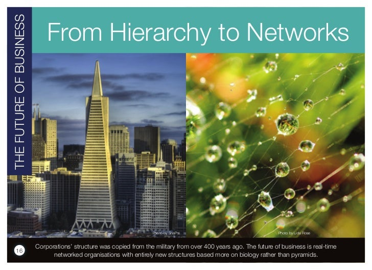 THE FuTuRE OF BuSINESS                             From Hierarchy to Networks                                             ...