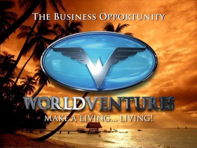 The Business OpportunityThe Business Opportunity