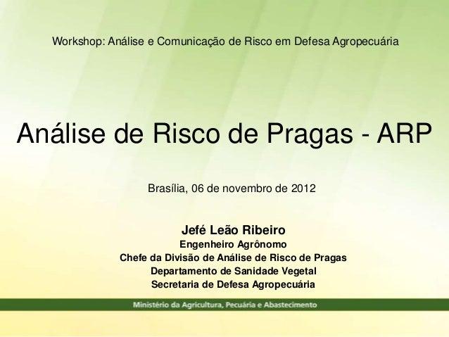 Workshop: Análise e Comunicação de Risco em Defesa AgropecuáriaAnálise de Risco de Pragas - ARP                   Brasília...