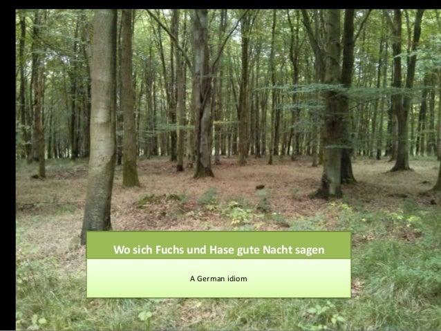 Wo sich Fuchs und Hase gute Nacht sagen A German idiom