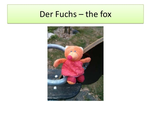 Der Fuchs – the fox