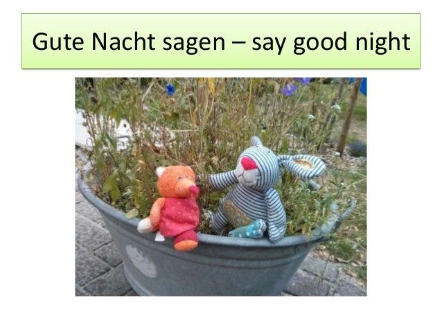 Gute Nacht sagen – say good night