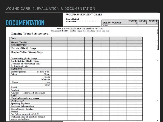 wound care plan template - wound documentation forms pictures to pin on pinterest