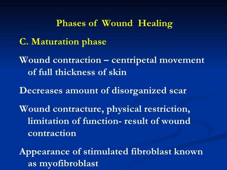 factors affecting wound healing pdf