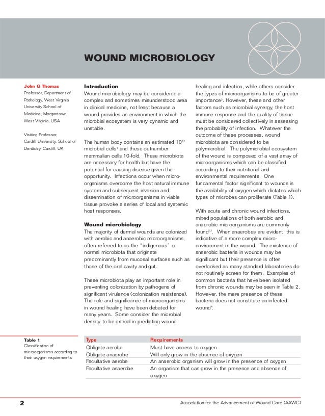 Wound infection and the role of biofilms