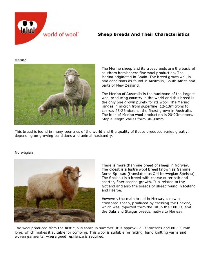 Wow sheep breeds-and_their_characteristics-2008opt