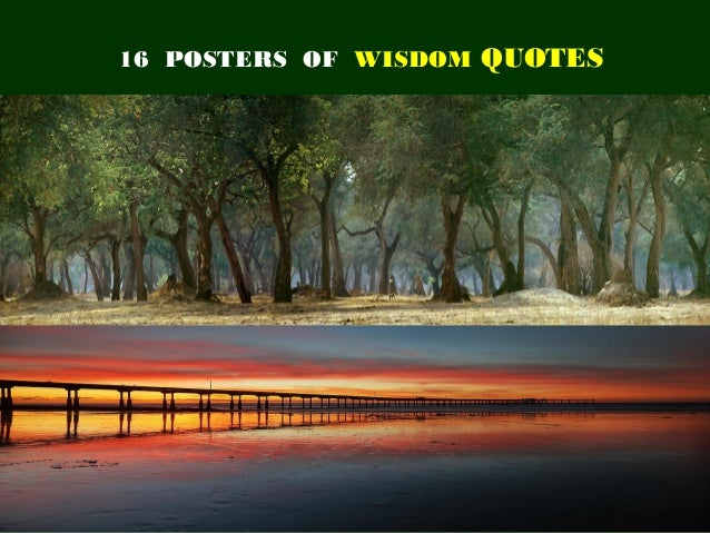 16 POSTERS OF WISDOM QUOTES                      1