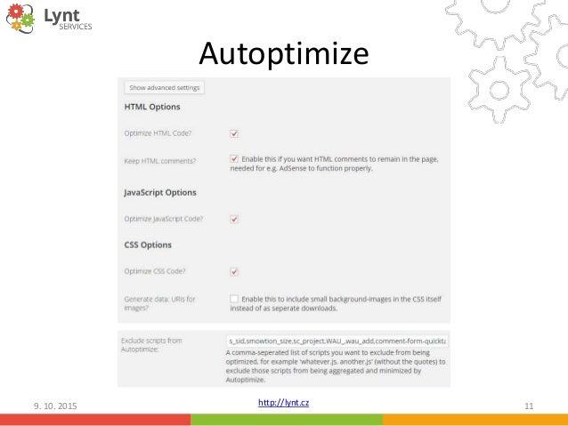 2015 10; 11. http://lynt.cz Autoptimize 9. 10.