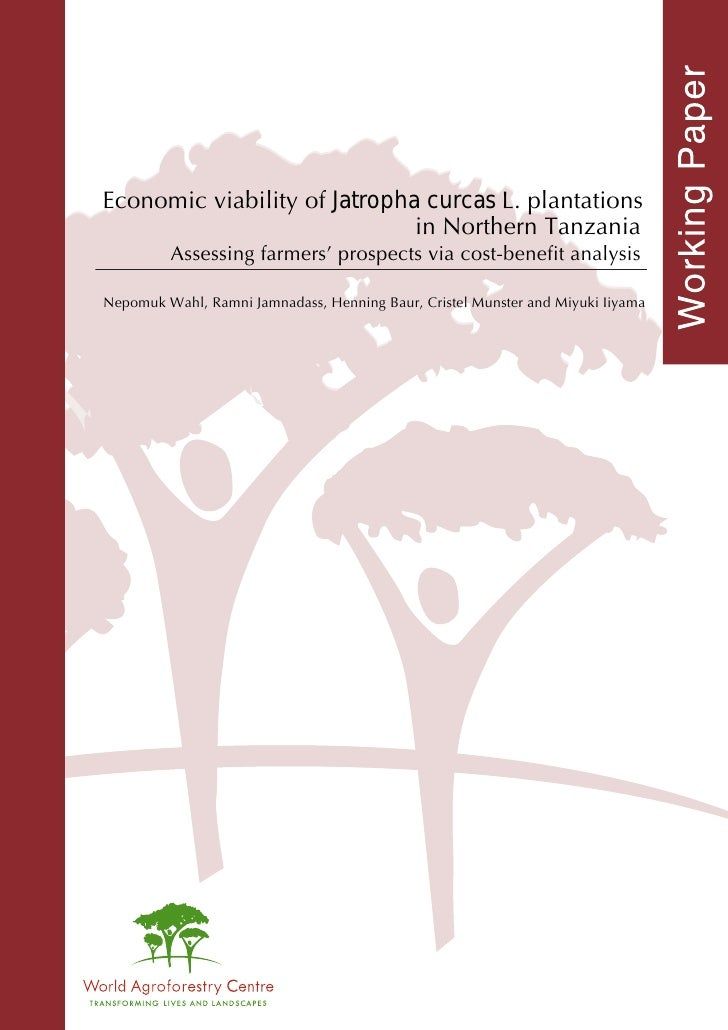 Economic viability of Jatropha curcas L. plantations                              in Northern Tanzania         Assessing f...