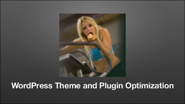 WordPress Theme and Plugin Optimization