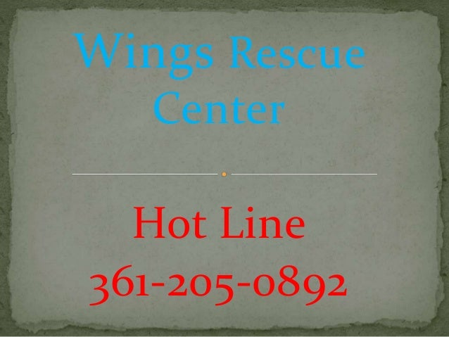 Wings Rescue Center Hot Line 361-205-0892