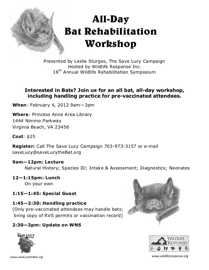 All-Day                                 Bat Rehabilitation                                     Workshop                   ...
