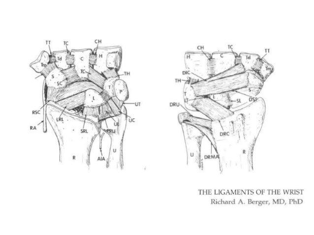 Wrist pain: making the diagnosis