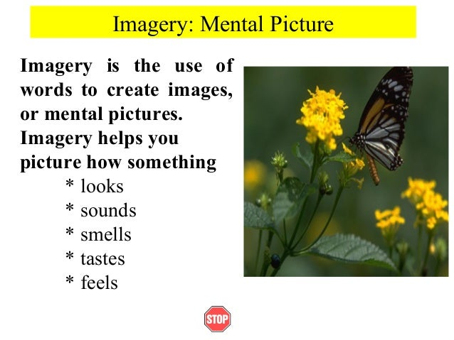 Imagery: Mental PictureImagery is the use ofwords to create images,or mental pictures.Imagery helps youpicture how somethi...