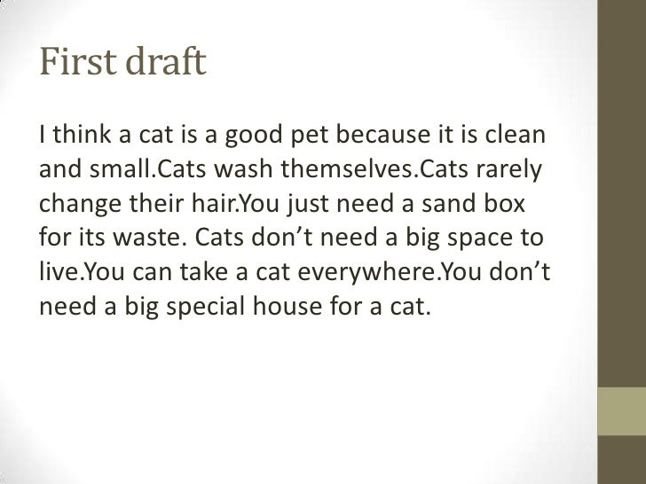 why cats are better than dogs persuasive essay