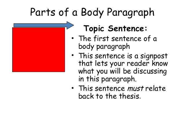 Parts of short essay