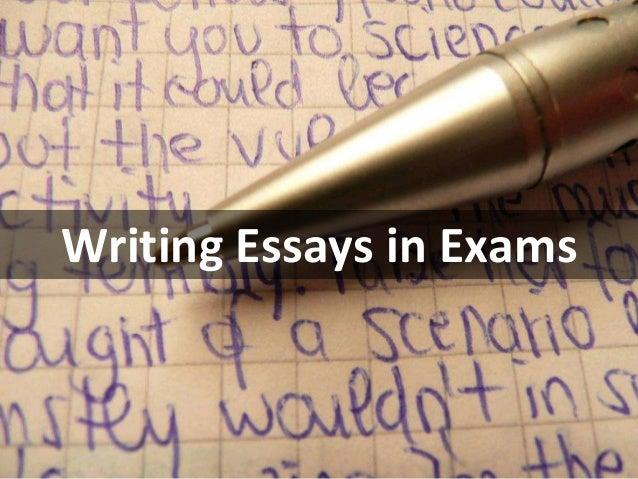 Essay hispanic slang