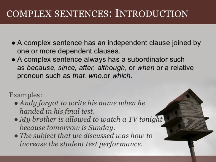 Augment in a sentence