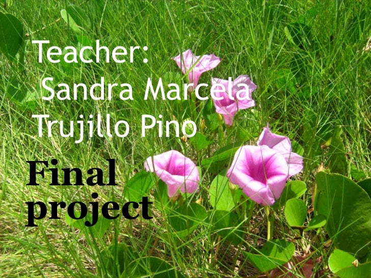 Teacher: Sandra MarcelaTrujillo PinoFinalproject