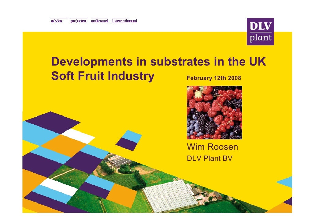 Developments in substrates in the UK Soft Fruit Industry   February 12th 2008                              Wim Roosen     ...