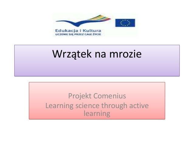 Wrzątek na mrozie       Projekt ComeniusLearning science through active            learning