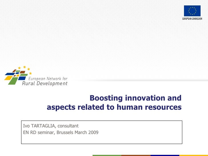 Ivo TARTAGLIA, consultant EN RD seminar, Brussels March  200 9 Boosting innovation and aspects related to human resources