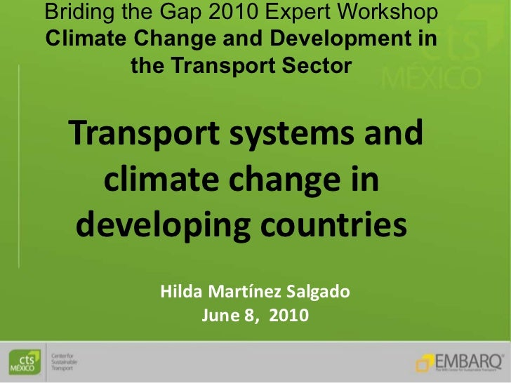 Briding the Gap 2010 Expert Workshop Climate Change and Development in          the Transport Sector     Transport systems...