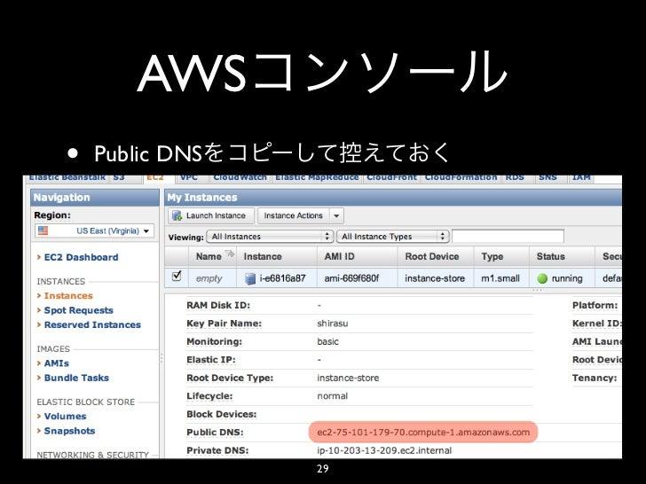 AWS•   Public DNS                 29