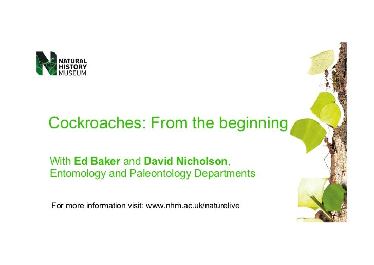 Cockroaches: From the beginningWith Ed Baker and David Nicholson,Entomology and Paleontology DepartmentsFor more informati...