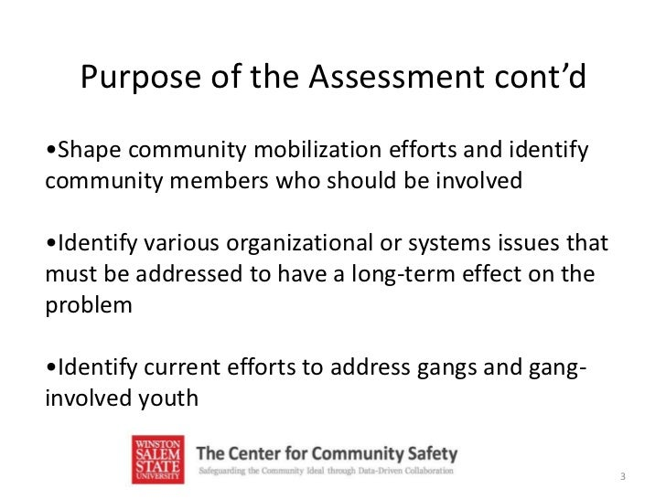 youth gang assessment Gang-related training | statewide needs assessment survey 3  4 gang-related training | statewide needs assessment survey types of training needed percent of respondents law enforcement and the courts gang prosecution 59%  youth gangs 55% outlaw motorcycle gangs 51% gang activities.