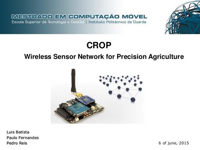 Luis Batista Paulo Fernandes Pedro Reis 6 of june, 2015 Wireless Sensor Network for Precision Agriculture CROP