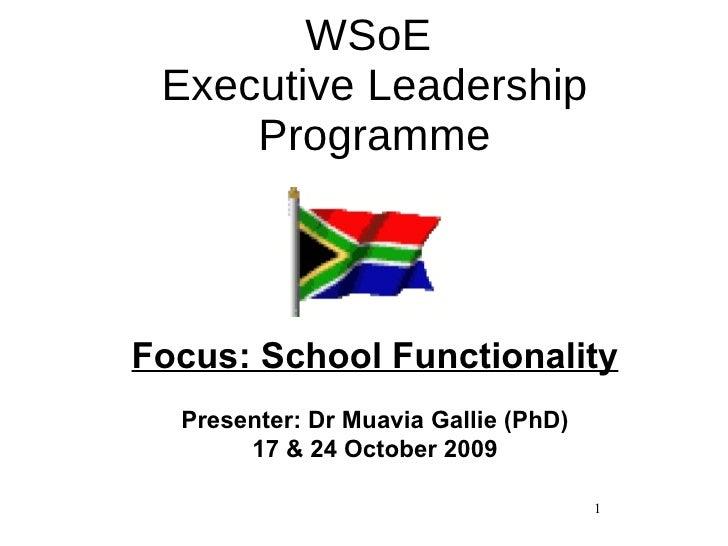 WSoE  Executive Leadership Programme Focus: School Functionality Presenter: Dr Muavia Gallie (PhD) 17 & 24 October 2009