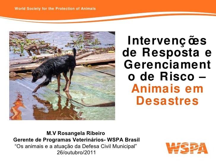 Intervenções de Resposta e Gerenciamento de Risco –  Animais em Desastres M.V Rosangela Ribeiro  Gerente de Programas Vete...
